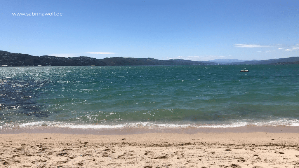 Wellington Tipps - Oriental Bay