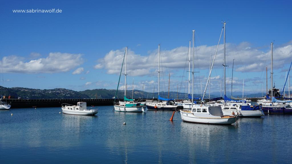 Wellington Tipps - Waterfront und Hafen