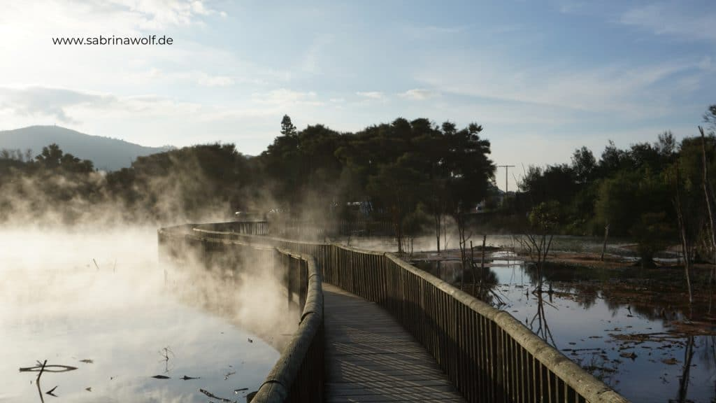 Rotorua - heiße Quellen - Neuseelands Nordinsel