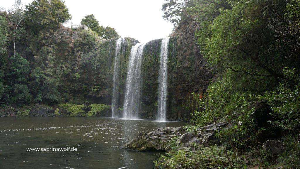 Wasserfall Whangarei - Neuseeland Nordinsel