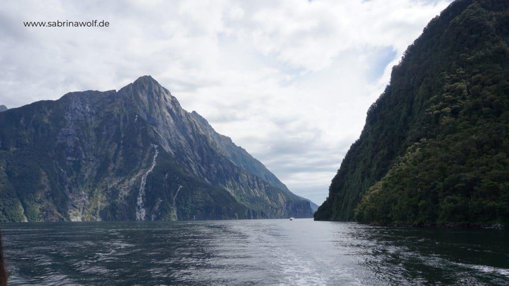 Milford Sound - meine Reise auf die Südinsel Neuseelands